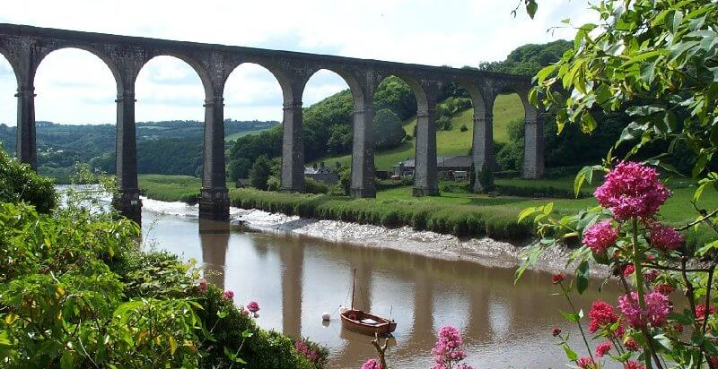 Tamar Valley Events: The Calstock Giant